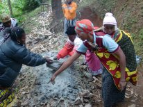 Adding rock dust to enrich the compost will make a difference on the coffee